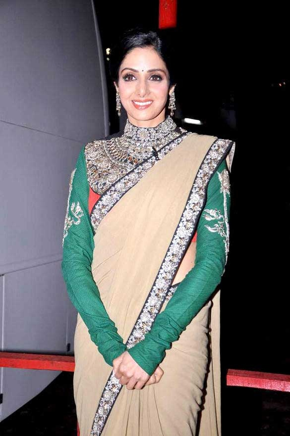 sridevi-kapoor-heavy-work-sleeveful-blouse
